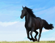 Running Free Digital Equine Painting
